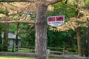 MJ Kennels Rules and Rates